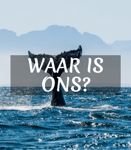 Wear Is Ons Mobile Fusion Slide Header Img De Vette Mossel Hermanus